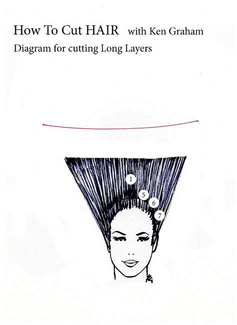 how to cut a layered bob haircut diagram how to cut hair in layers diagram 2 dark brown hairs