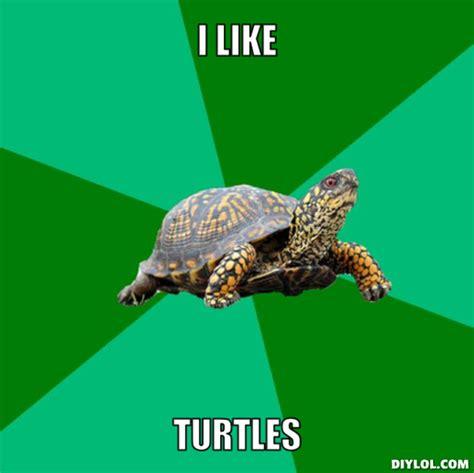 I Like Turtles Meme - turtle memes torrenting turtle meme generator i like