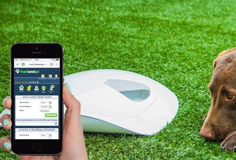 7 Smart Pet Solutions by Feed And Go Smart Pet Feeder With And Wi Fi