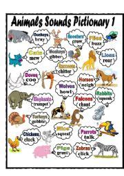 animals sounds pictionary esl worksheet  missola