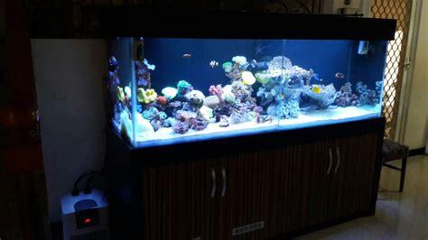 Jual Lu Aquarium Surabaya jual akuarium di surabaya harga murah surabaya oleh toko