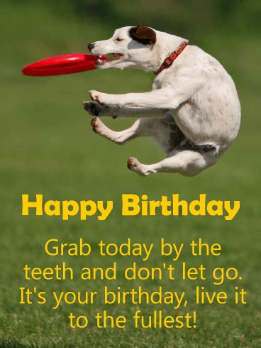 grab today happy birthday card birthday greeting