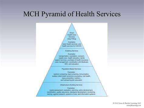 image gallery health services pyramid