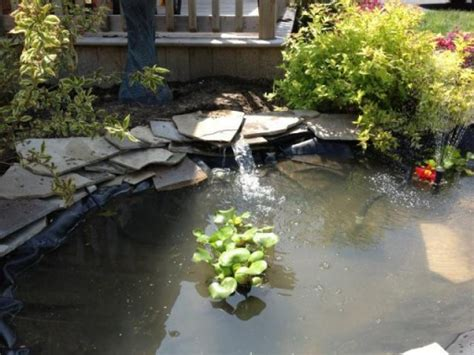backyard ponds kits backyard pond kit triyae backyard waterfalls and ponds