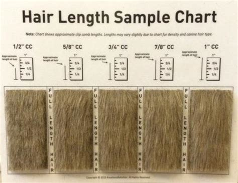 sizes of bladed for hair cuts grooming accessories canadian grooming distributor