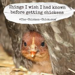 the chicken chick 174 things i wish i had known before
