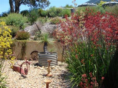1000 Images About Native Garden Ideas On Pinterest Australian Garden Ideas