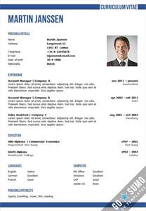 business cv template in word and powerpoint matching