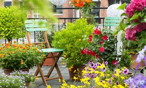 idee terrazzo fiorito idee per un balcone fiorito fai da te 7 segreti per