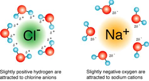 hydration shell definition ionic compounds does water ionically bond to chloride