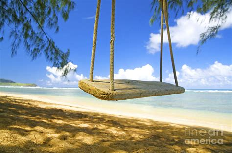 beach swings beach swing photograph by kicka witte printscapes