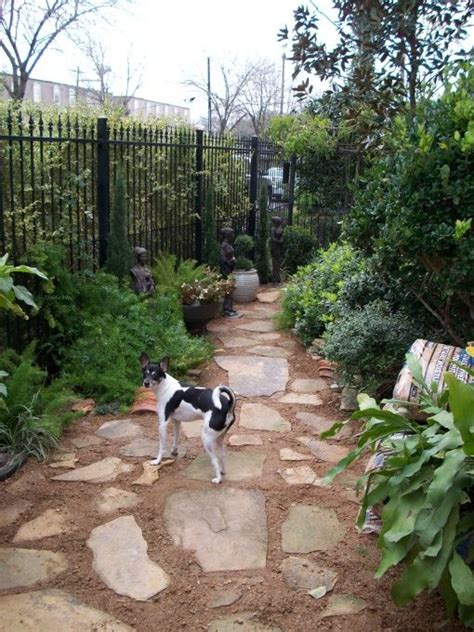 small backyard dogs side yard landscaping ideas with small patio pictures