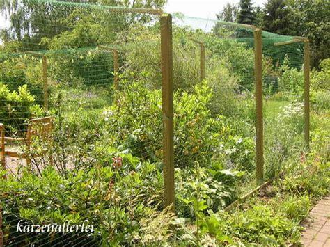 Katzensicherer Garten by Gabis Katzengarten 1 Mit Netz Der Katzensichere Garten