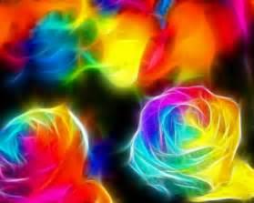 rainbow colored roses color rainbow by terra k on deviantart
