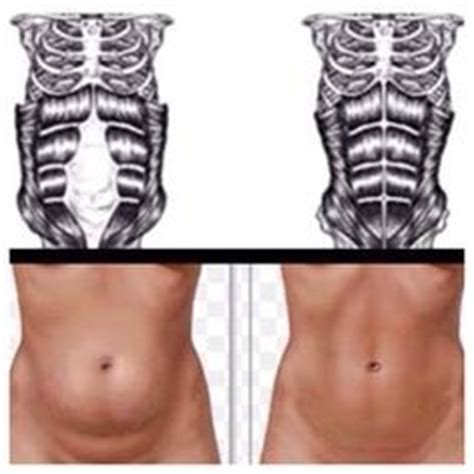 how to lose belly pooch after c section 78 ideas about pooch exercise on pinterest belly pooch