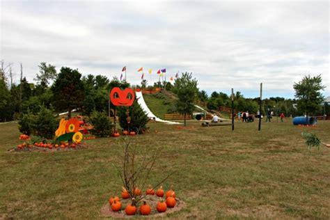 ticonderoga farms amazing farm fun at ticonderoga s fall festival our kids com