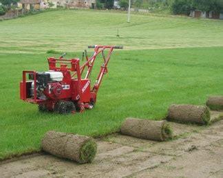 costo tappeto erboso al mq prato a rotoli
