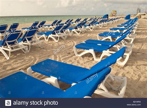 lounge chairs lined    morning   resort hotel  miami stock photo  alamy