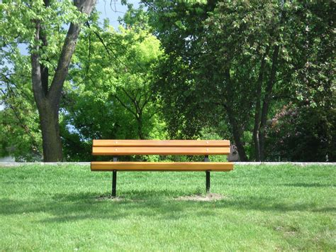 bench at the park day at the park by roadkillzebra on deviantart