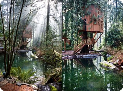 washington tree houses pin by lauren marie on places to go pinterest