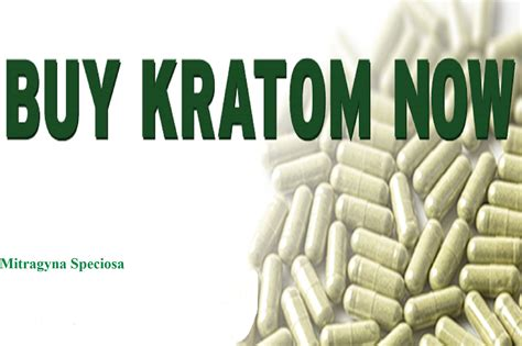 where is the best place to buy a couch the best places to buy kratom