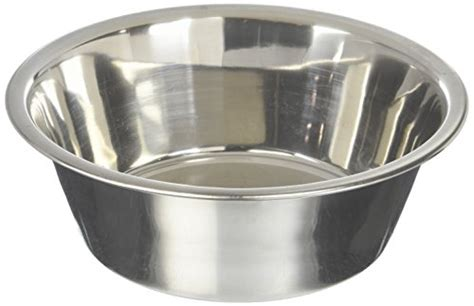 dog bowls   dogs eating  reviews