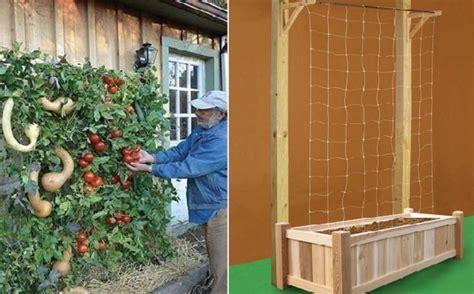 how to build a vertical vegetable garden home design