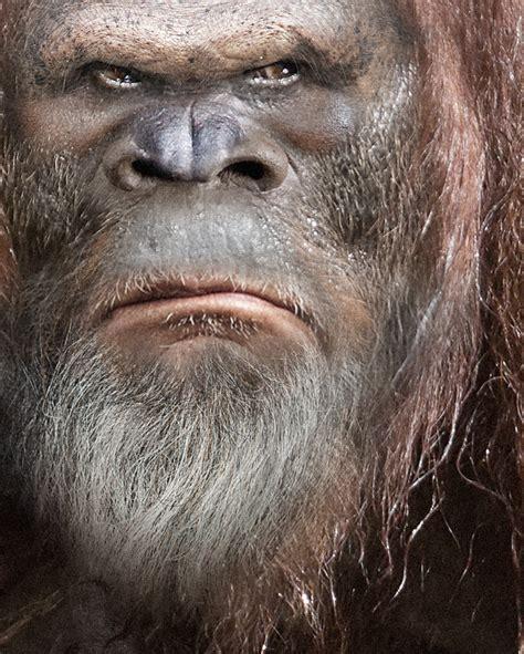 Bigfoot Email Search Bigfoot 49 Satanfudge
