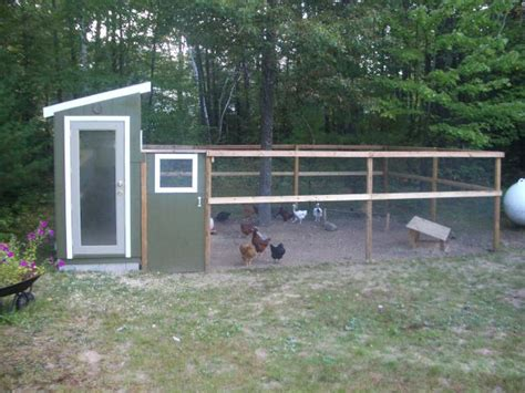 backyard coops chicken coops in backyard chicken coop design ideas