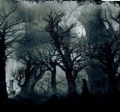 el bosque oscuro the mi rinc 243 n literario porque es aqu 237 donde creo mi realidad