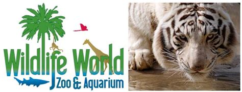 Wildlife World Zoo Coupons 2018 Hotels Jobs Hours Wildlife World Zoo Lights