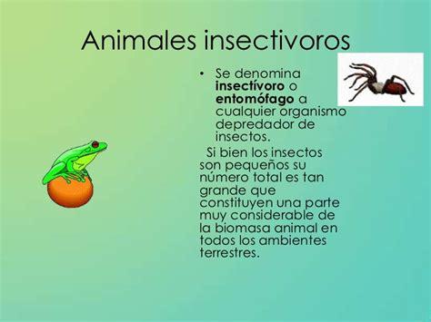 imagenes de animales por su alimentacion clasificaci 243 n de los animales seg 250 n su alimentaci 243 n