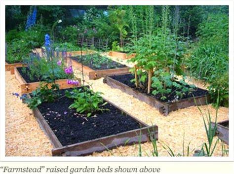 benefits of raised garden beds raised garden beds eartheasy com