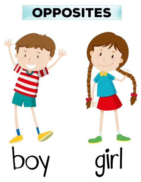 Opposite Words For Boy And Girl Vector Free Download Picture Of Boy And Free
