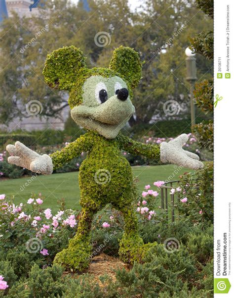 mickey mouse topiary editorial photo image 20136711