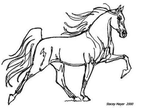 coloring pages of tennessee walking horses 17 best images about stacey mayer artwork on pinterest