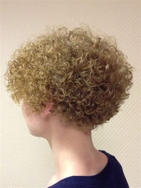 poodle perm for sissy 10 best images about dauerwellen on pinterest poodles