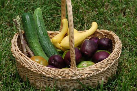 Common Sense Health Care Cookingforums Net Common Garden Vegetables