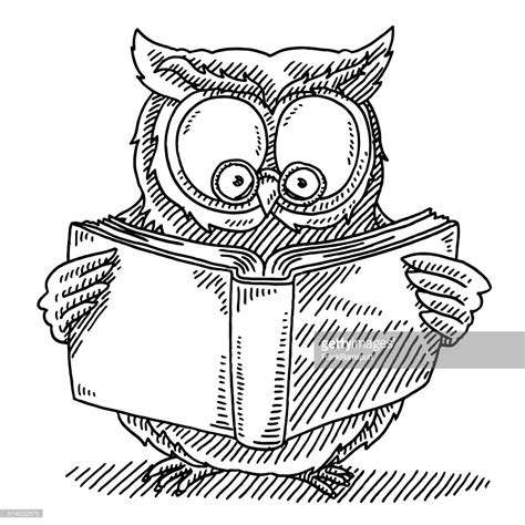 wise owl coloring page wise owl reading book drawing vector art getty images