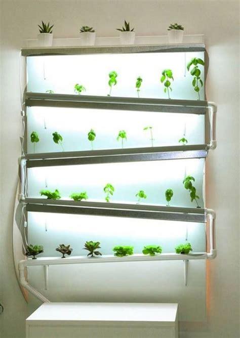 indoor hydroponic wall garden  hydroponic growing