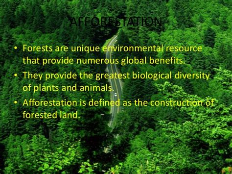 Advantages Of Afforestation Essay by Afforestation And Deforestation Relating Printing