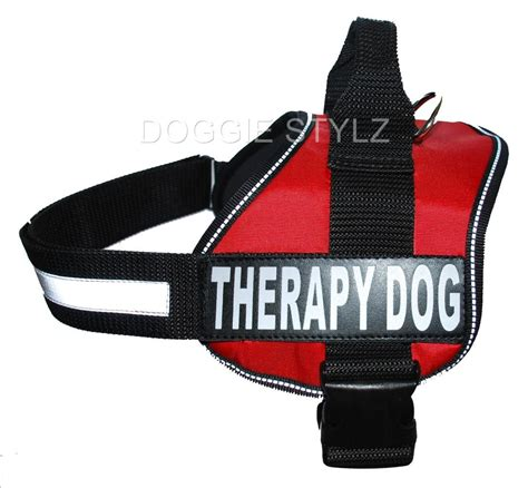therapy in harness service harness working get free image about wiring diagram
