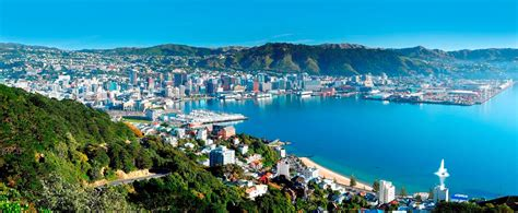 Looksee Wellington by New Zealand Is Looking For Tech Professionals And They Ll