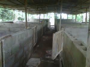 Amazing Concrete Block Building Plans #9: Pen1.jpg