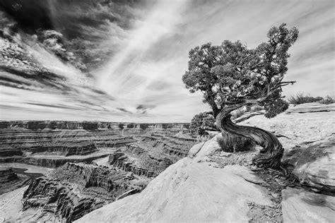 imagenes en blanco y negro de un paisaje 12 trucos para captar impresionantes paisajes en blanco y