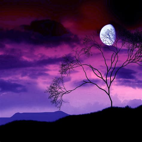the light of the moon by the light of the moon 4k desktop wallpaper hd wallpapers
