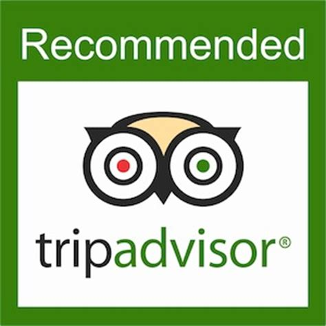 tripadvisor the must for a service related small
