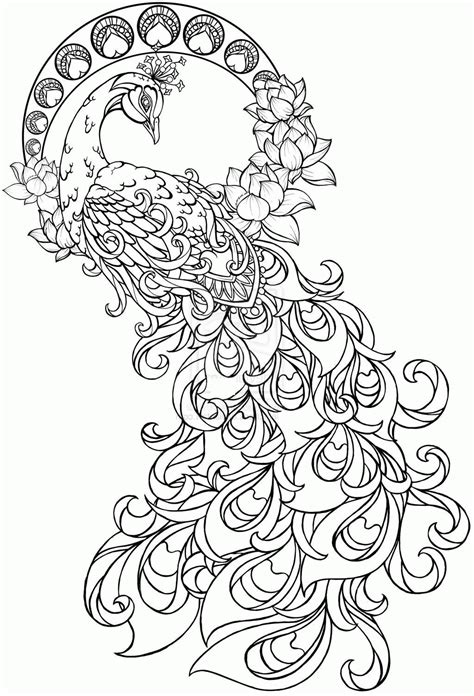 peacock coloring pages for adults image result for coloring pages peacock prisma