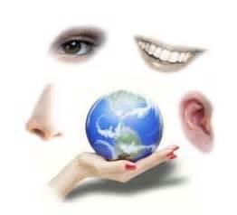 imagenes sensoriales auditivas concepto definici 243 n de neuroling 252 237 stica qu 233 es significado y
