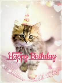 best 25 happy birthday cats ideas on happy birthday cat images birthday wishes and